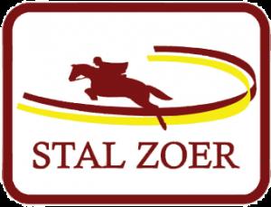 a-zoer-logo-trans